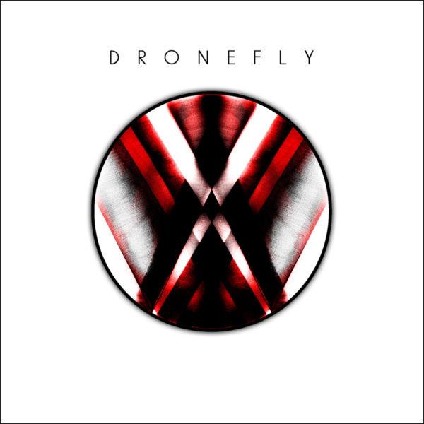 dronefly_art